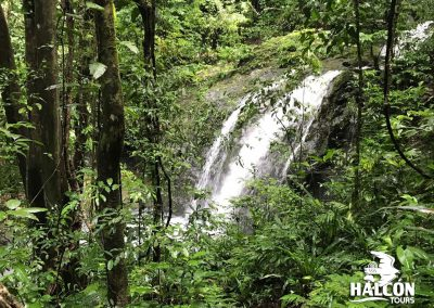 waterfall in manuel antonio national park